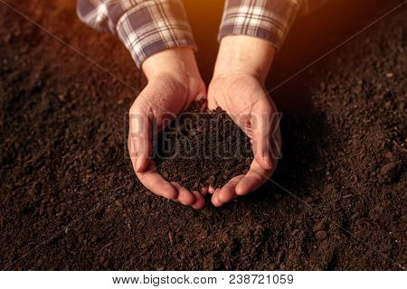 Soil Fertility Concept, Female Farmer With Cupped Hands Full Of Fertile Soil With Ability To Sustain