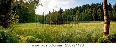 Grass Overgrown Pond With A Dramatic Cloudy Sky. Panorama View Of The Black Pond In National Nature