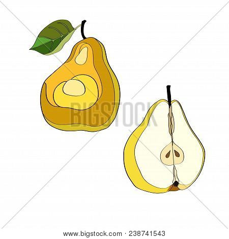 Vector Illustration. Pear, Cut Pear, Half Pear Color Image