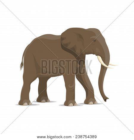 Elephant Animal Cartoon Icon Of African Savanna Mammal. Gray Elephant Standing Sideways Isolated Sym