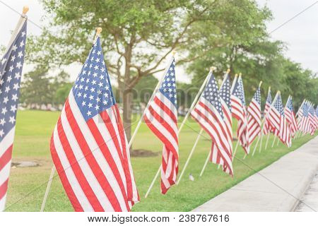 Long Row Of Lawn American Flags On Green Grass Yard Memorial Day