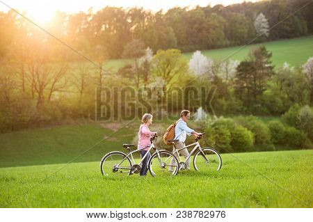 Beautiful Senior Couple Outside In Spring Nature, Walking With Bicycles On Grassland.