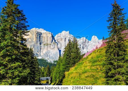 The coniferous forests at the foot of white limestone and dolomite rocks. The most beautiful route in the Italian Dolomites, the Southern Limestone Alps. The concept of active and car tourism