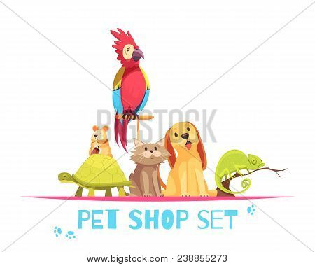 Pet Shop Composition With Domestic Animals Parrot, Hamster, Chameleon, Dog And Cat On White Backgrou