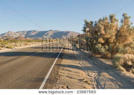 Deserted Desert Road