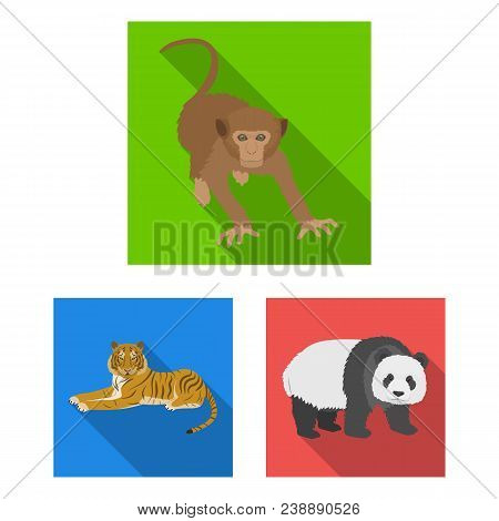 Different Animals Flat Icons In Set Collection For Design. Bird, Predator And Herbivore Vector Symbo