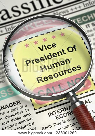 Vice President Of Human Resources. Newspaper With The Small Advertising. Magnifying Glass Over Newsp