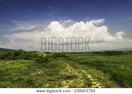 Countryside Landscape. Green Field And Clouds Landscape. Summer Landscape In Countryside. Serbian La