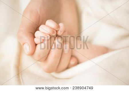 Female Hand Holding Her Newborn Baby's Hand. Mom With Her Child. Maternity, Family, Birth Concept. C