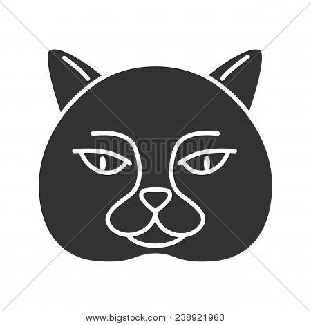 British Shorthair Cat Glyph Icon. British Blue. Silhouette Symbol. Negative Space. Vector Isolated I
