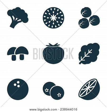Fruit Icons Set With Acorn, Coco, Spinach And Other Coconut Elements. Isolated Vector Illustration F