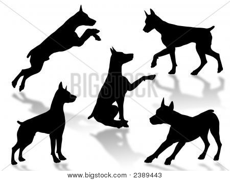 Dog silhouettes in different poses and attitudes poster