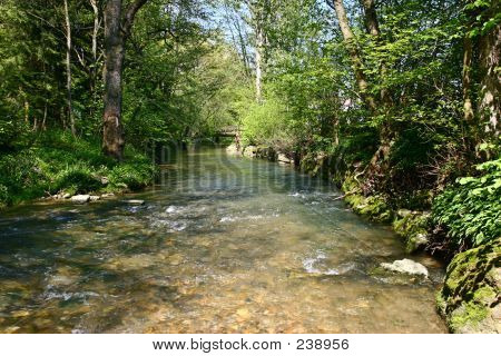 Water, Stones And Trees