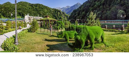 The Green Planet Park has already been called a fantastic world in the mountains. A park was opened in the mountain-tourist center Laura Gazprom in June 2017.