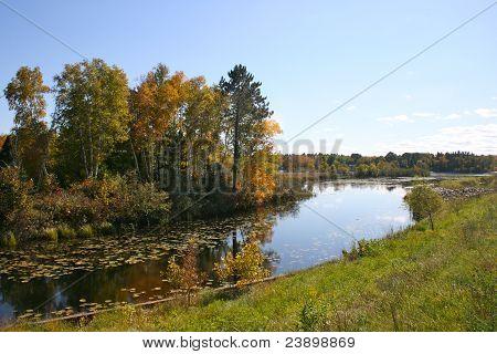 Inlet near Pokegama Lake