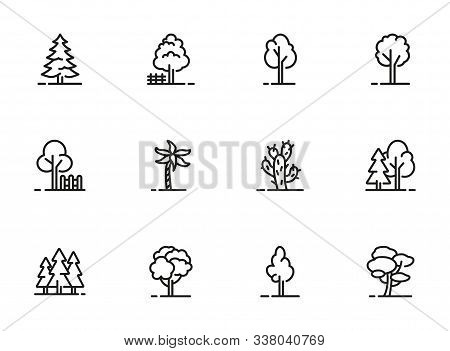 Trees Thin Line Icon Set. Forest, Park And Garden Trees Isolated Sign Pack. Nature Concept. Vector I