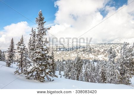 Sheregesh. Russia. Winter Mountain Landscape. Sunny Day. Coniferous Taiga Under Fresh White Snow Aga