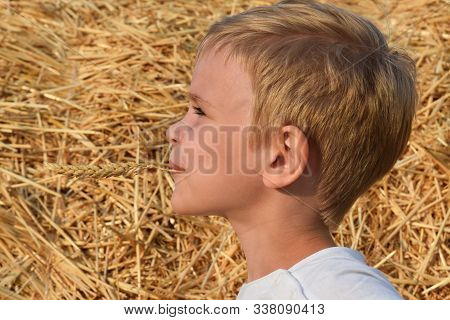 A Child On The Background Of Straw, Holding A Spikelet In His Teeth And Smiling. Emotions, Warmth.