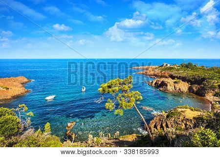 Esterel Mediterranean Tree, Red Rocks Coast, Beach And Sea. French Riviera In Cote D Azur Near Canne