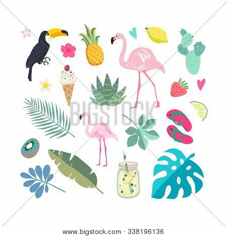 Set Of Summer Elements: Tropical Flowers, Flamingos, Toucan, Smoothies, Palm Leaves. Summer Time Lab