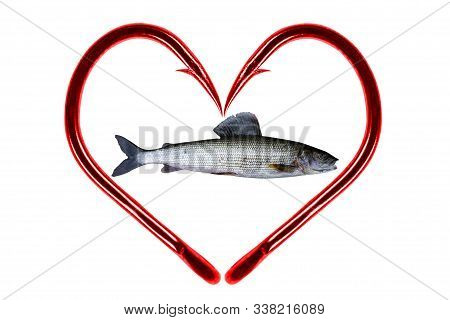 Red Fishing Hook Love Heart Sign With Grayling Fish Isolated On A White Background. Fishing Hook Clo