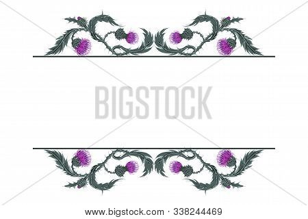 Frame For Text With Linear Horizontal Pattern Of Scottish Flower Thistle On White.