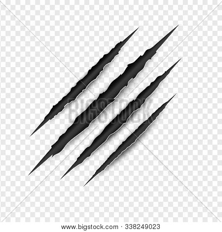 Illustration Of Claws Scratches Isolated On Transparent White Background. Creative Paper Craft And C