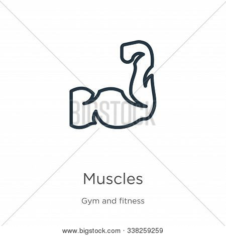Muscles Icon. Thin Linear Muscles Outline Icon Isolated On White Background From Gym And Fitness Col