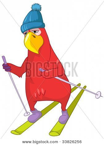 Cartoon Character Funny Parrot Isolated on White Background. Skiing. Vector EPS 10.