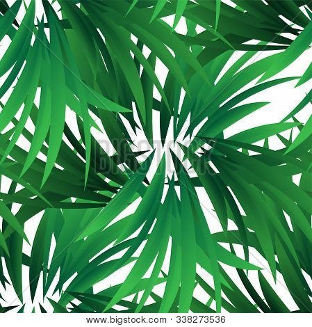 Exotic Jungle Wallpaper. Seamless Vector Floral Pattern. Spring Decoration. Pattern Design. Beautifu
