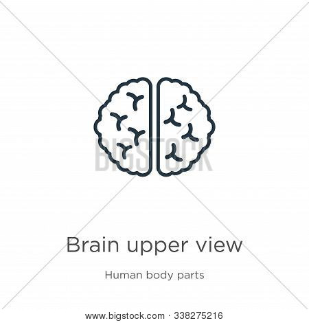Brain Upper View Icon. Thin Linear Brain Upper View Outline Icon Isolated On White Background From H