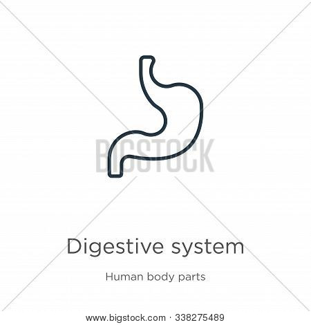 Digestive System Icon. Thin Linear Digestive System Outline Icon Isolated On White Background From H