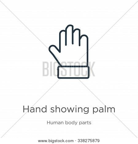 Hand Showing Palm Icon. Thin Linear Hand Showing Palm Outline Icon Isolated On White Background From