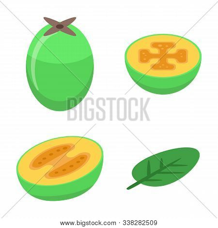 Feijoa Icons Set. Isometric Set Of Feijoa Vector Icons For Web Design Isolated On White Background