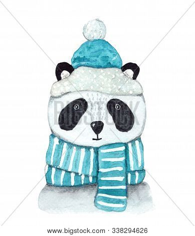 Cute Watercolor Winter White And Black Panda In Striped And Snowy Blue Scarf And Christmas Hat. Chil