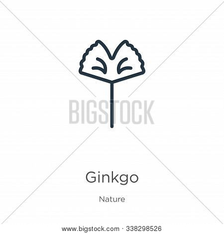 Ginkgo Icon. Thin Linear Ginkgo Outline Icon Isolated On White Background From Nature Collection. Li