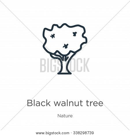 Black Walnut Tree Icon. Thin Linear Black Walnut Tree Outline Icon Isolated On White Background From