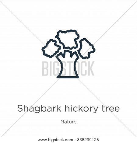Shagbark Hickory Tree Icon. Thin Linear Shagbark Hickory Tree Outline Icon Isolated On White Backgro