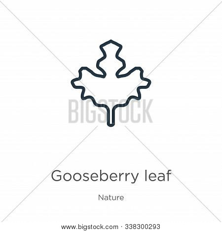 Gooseberry Leaf Icon. Thin Linear Gooseberry Leaf Outline Icon Isolated On White Background From Nat