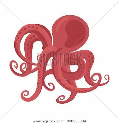 Octopus Vector Icon.cartoon Vector Icon Isolated On White Background Octopus.