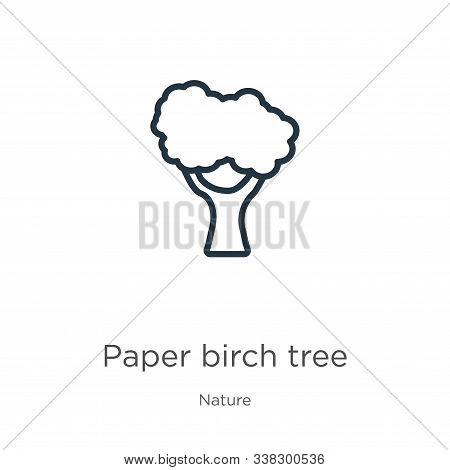 Paper Birch Tree Icon. Thin Linear Paper Birch Tree Outline Icon Isolated On White Background From N