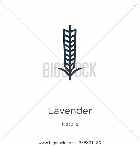 Lavender Icon. Thin Linear Lavender Outline Icon Isolated On White Background From Nature Collection