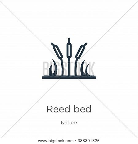 Reed Bed Icon. Thin Linear Reed Bed Outline Icon Isolated On White Background From Nature Collection
