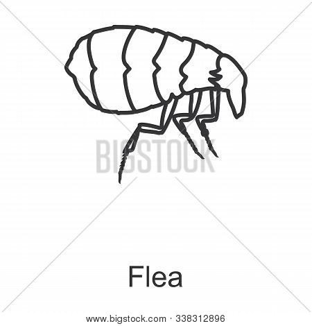 Flea Vector Icon.line Vector Icon Isolated On White Background Flea.