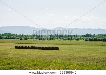 poster of Vivid green scenery with big beautiful mowed field in sunlight. Wonderful scenic landscape with hay rolls in green field with view to mountains on distance in sunny day. Haymaking on vastness field.
