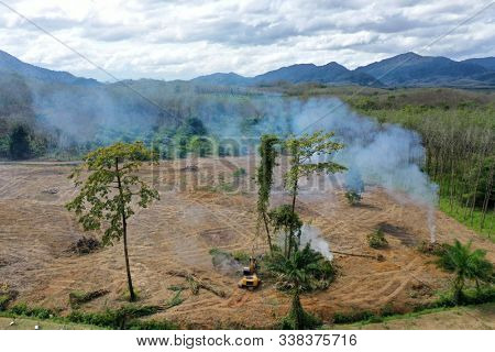 Deforestation. Rainforest cut down and burned to make way for palm oil plantations