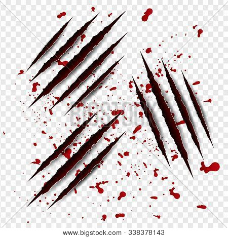 Set Illustration Of Claws Scratches With Red Blood On Isolated Background. Creative Paper Craft,cut