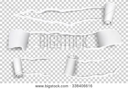Torn Paper. Ripped Sheets, Curl Vector Paper Elements Isolated On Transparent Background. Illustrati