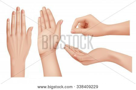 Hands Realistic. Gestures Human Palms And Fingers Pointing Hand People Communication Language Vector