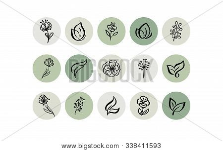 Green Highlight Cover Icon. Highlight Story Natural. Hand Drawn Floral Logo. Logo Template For Photo